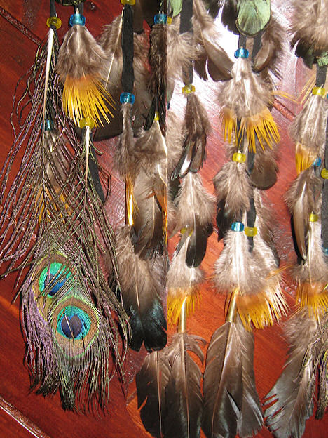 detail of macaw feathers on dream catcher
