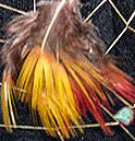 detail of pheasant feathers in the dreamcatcher web