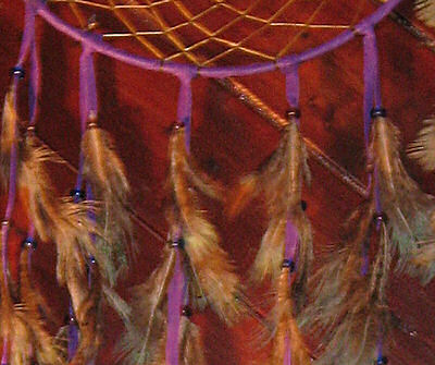 detail of pheasant feathers in dreamcatcher