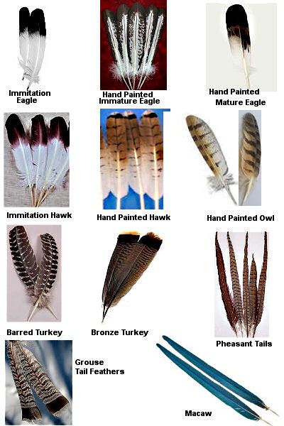 feather chart