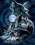 Bark at the Moon Wolf T-Shirt