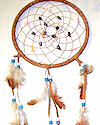 "7"" Seashell Dream Catcher"