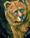 Cinnamon Grizzly Bear Original Painting