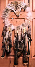 Coyote Dreamcatcher