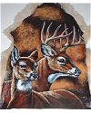 Buck and Doe Painted on Goat Hide
