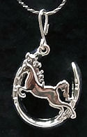 Horse in Horseshoe Necklace