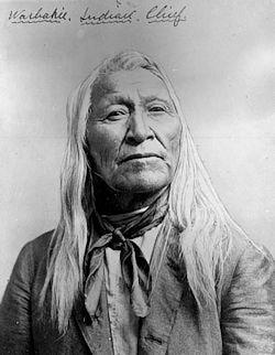 Shoshone Chief Washakie