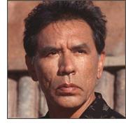 Wes Studi, native american actor