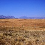 Blackfeet Indian Reservation fields