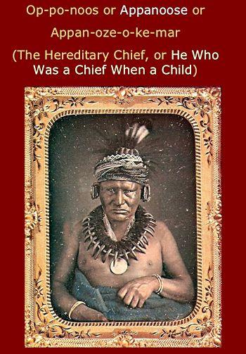 Chief Appanoose, Meswaki chief