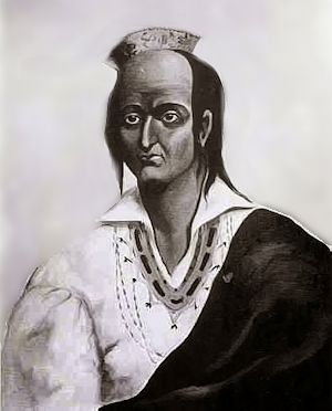 Metacomet or King Philip of the Wampanoags