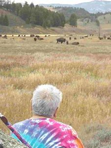 Dr. Henrietta Mann faces the buffalo herd and offers her prayers and songs