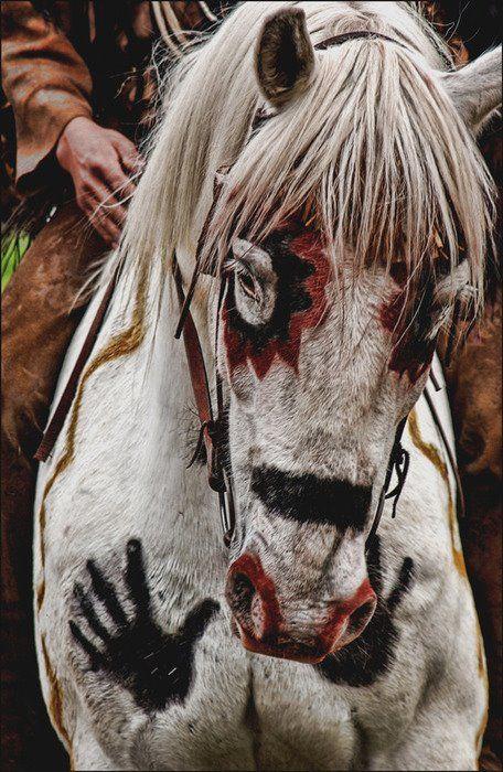 Painted War Horse